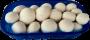 Funghi Champignon Extra