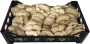 Funghi Pleurotus Sfuso a Costa